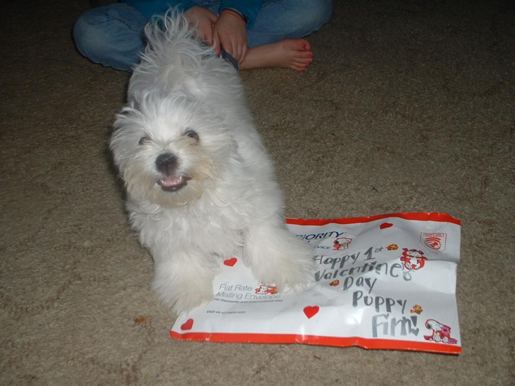 Finn's Valentine-001.jpg