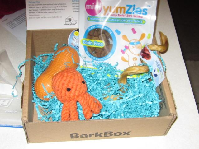 Bailey's First Barkbox Arrived!-008.jpg