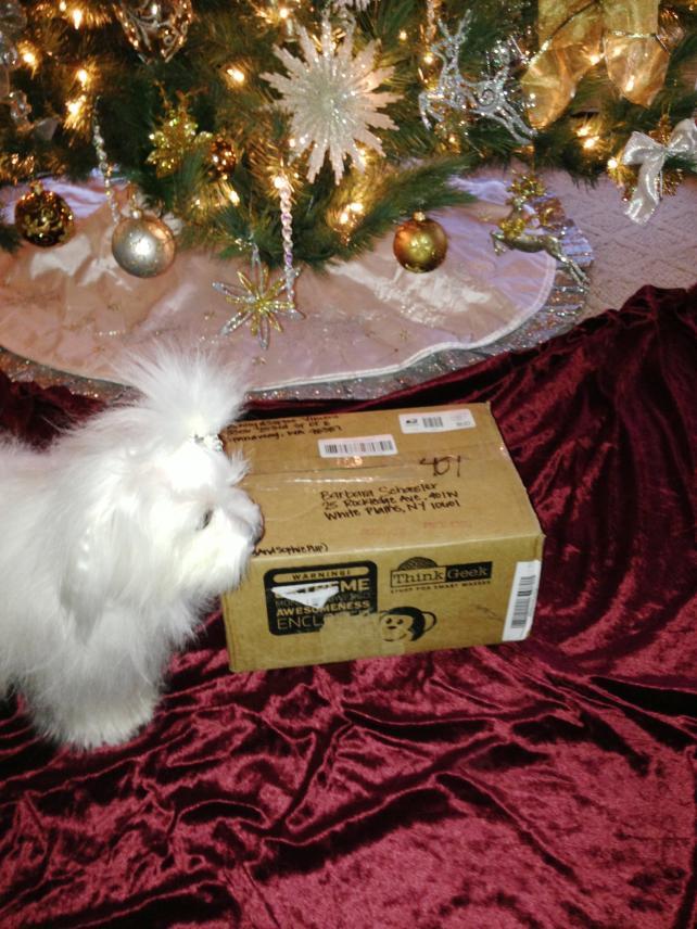 Zoe's Secret Santa Reveal-027.jpg