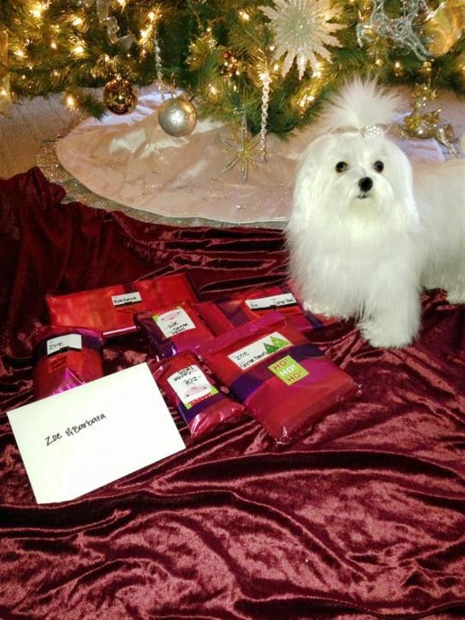 Zoe's Secret Santa Reveal-028.jpg