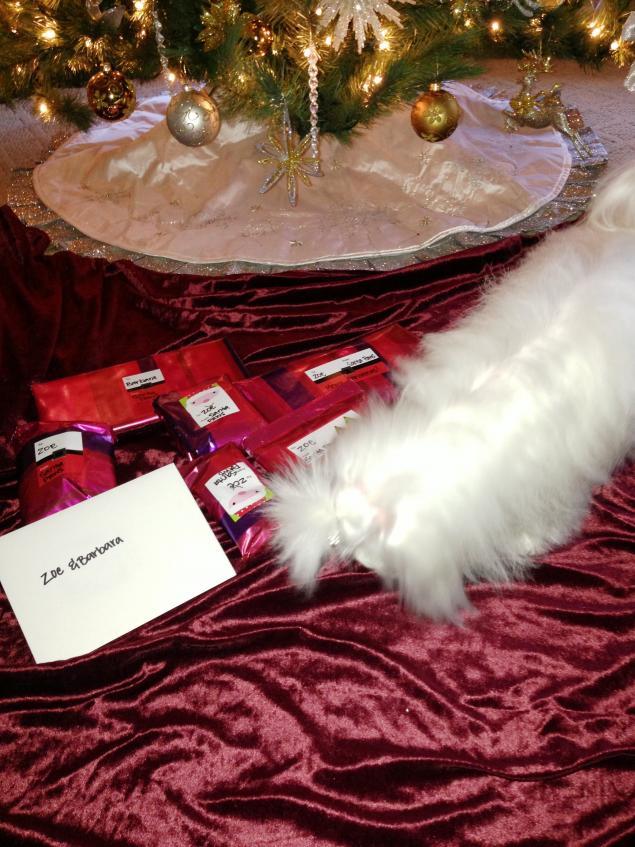 Zoe's Secret Santa Reveal-029.jpg