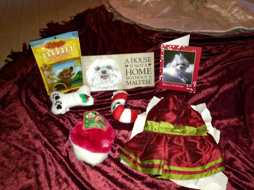 Zoe's Secret Santa Reveal-042.jpg