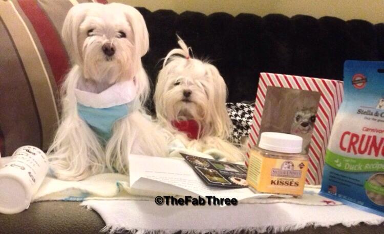 The Fab Three's Fab Secret santa revel-1545562_557537767717017_4828549904998387807_n.jpg