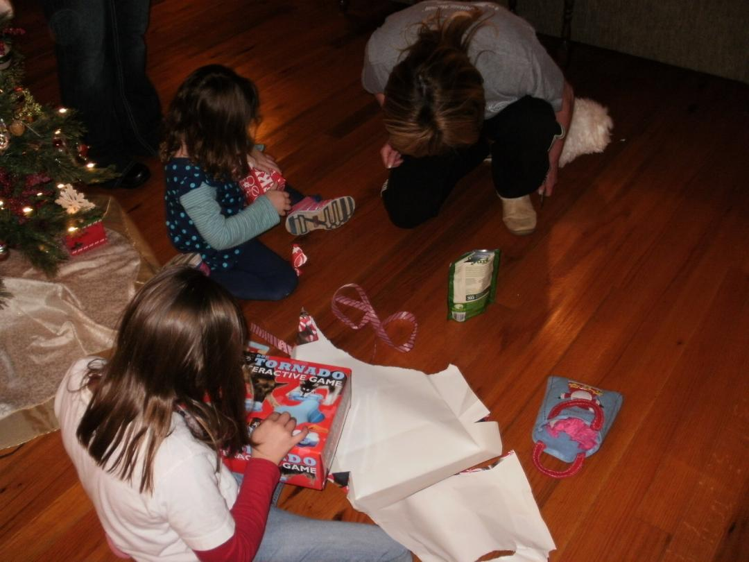 Abbigails reveal-abbigail-christmas-2012-170-.jpg