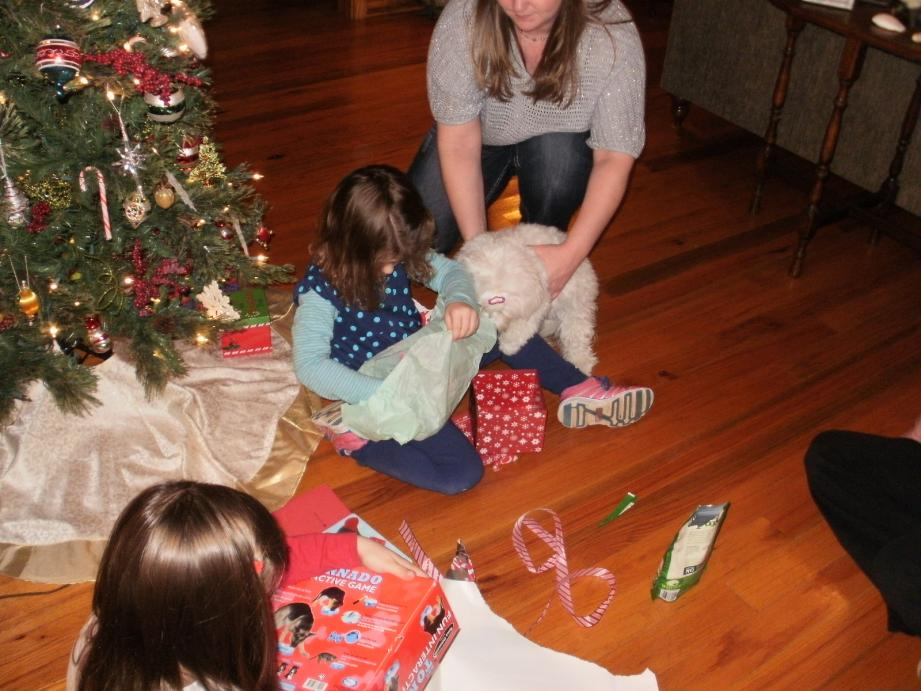 Abbigails reveal-abbigail-christmas-2012-171-.jpg