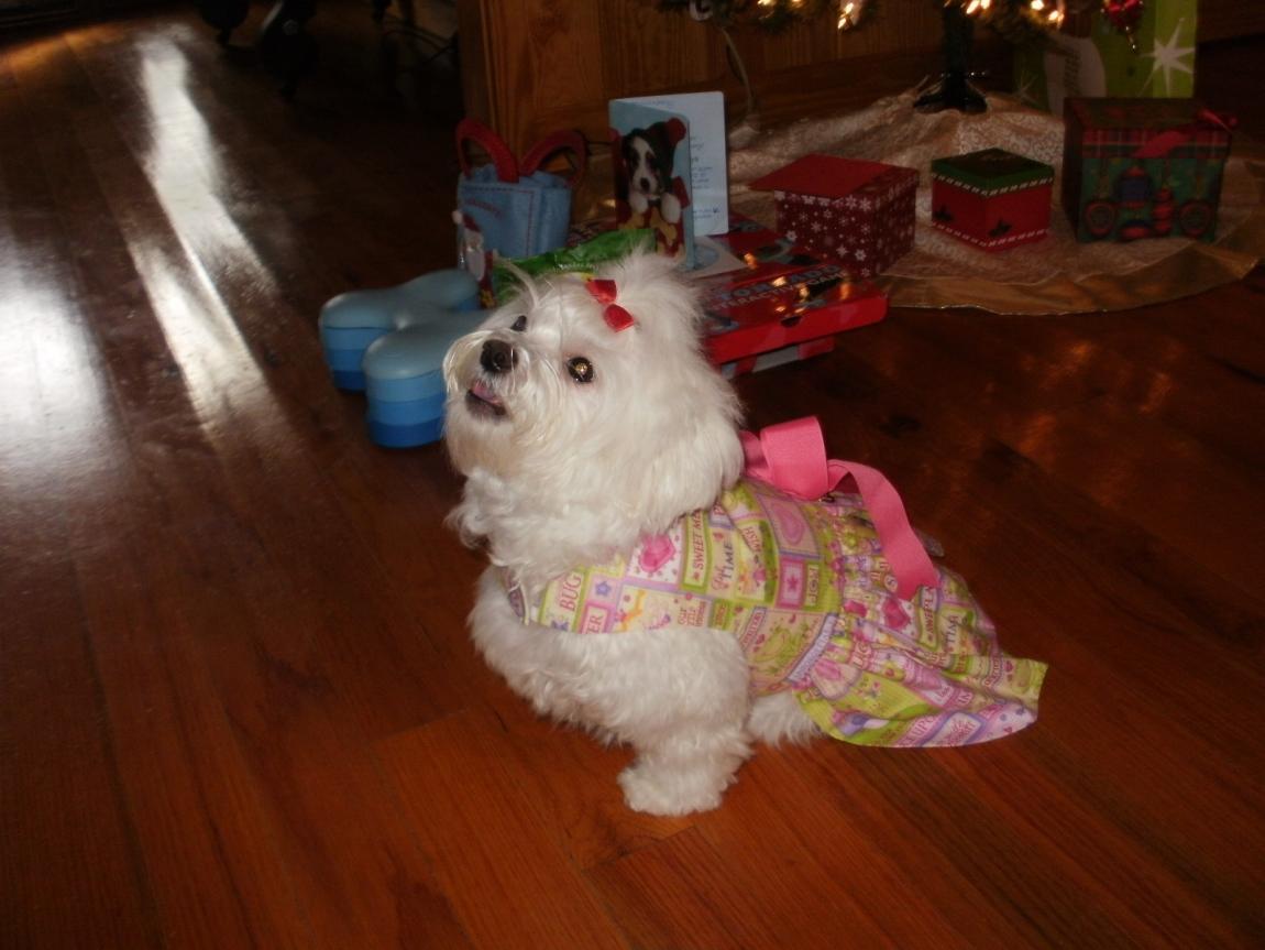 Abbigails reveal-abbigail-christmas-2012-226-.jpg