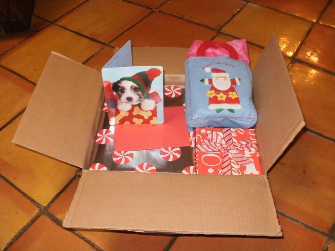 Abbigails reveal-abbigail-christmas-2012-28-.jpg
