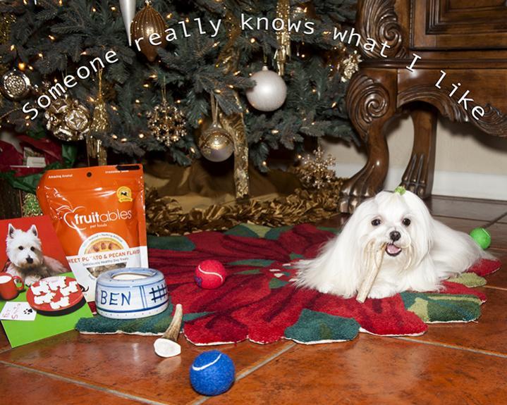 Bens Secret Santa Reveal...-ben10.jpg