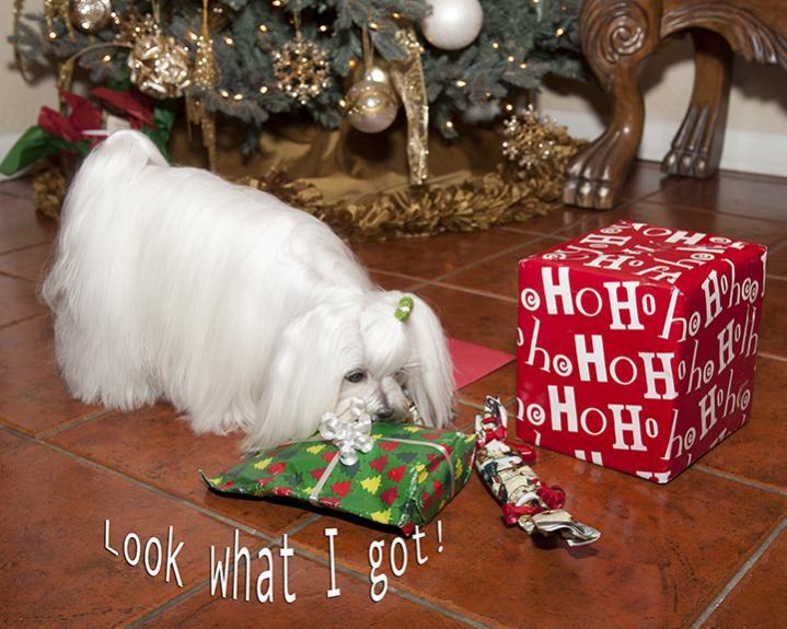Bens Secret Santa Reveal...-ben2.jpg