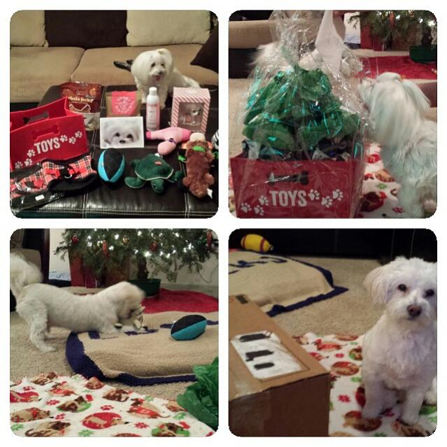 Lucky & Baileys SS reveal 2014-cell-phone-pictures-564.jpg
