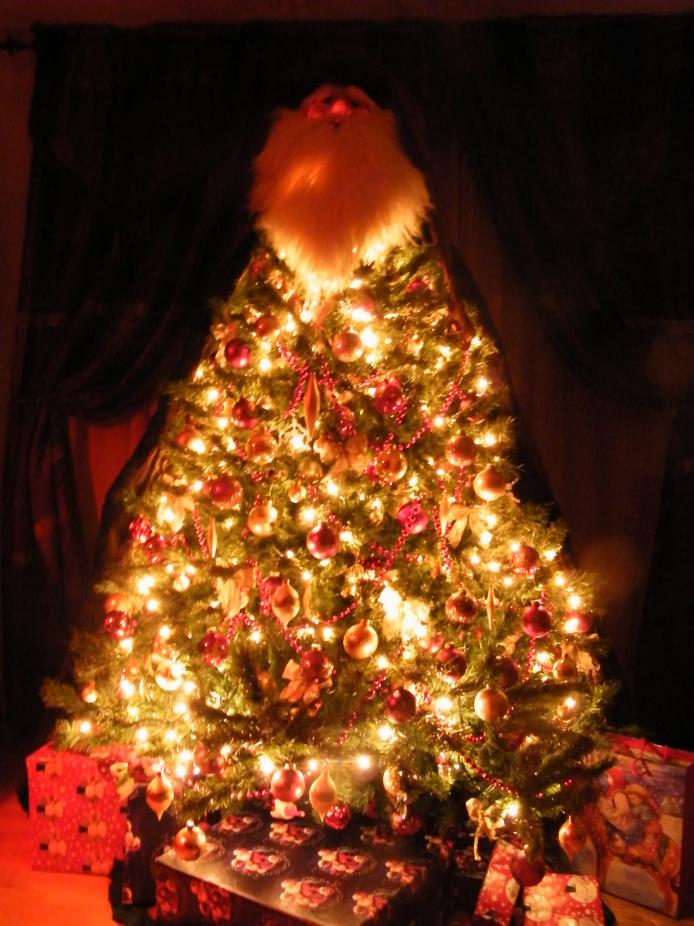 Hey!!!  So let's see your Christmas tree - or holiday decorations!!-cp2010i.jpg