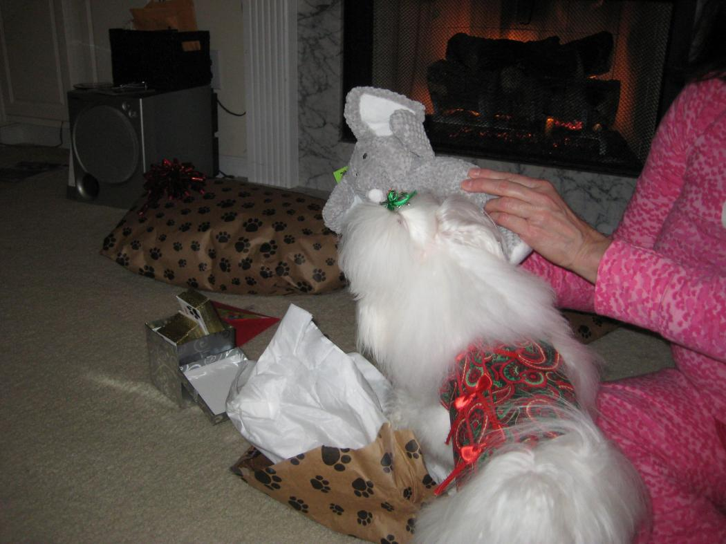 Giovanni's Secret Santa Reveal!-elephant.jpg