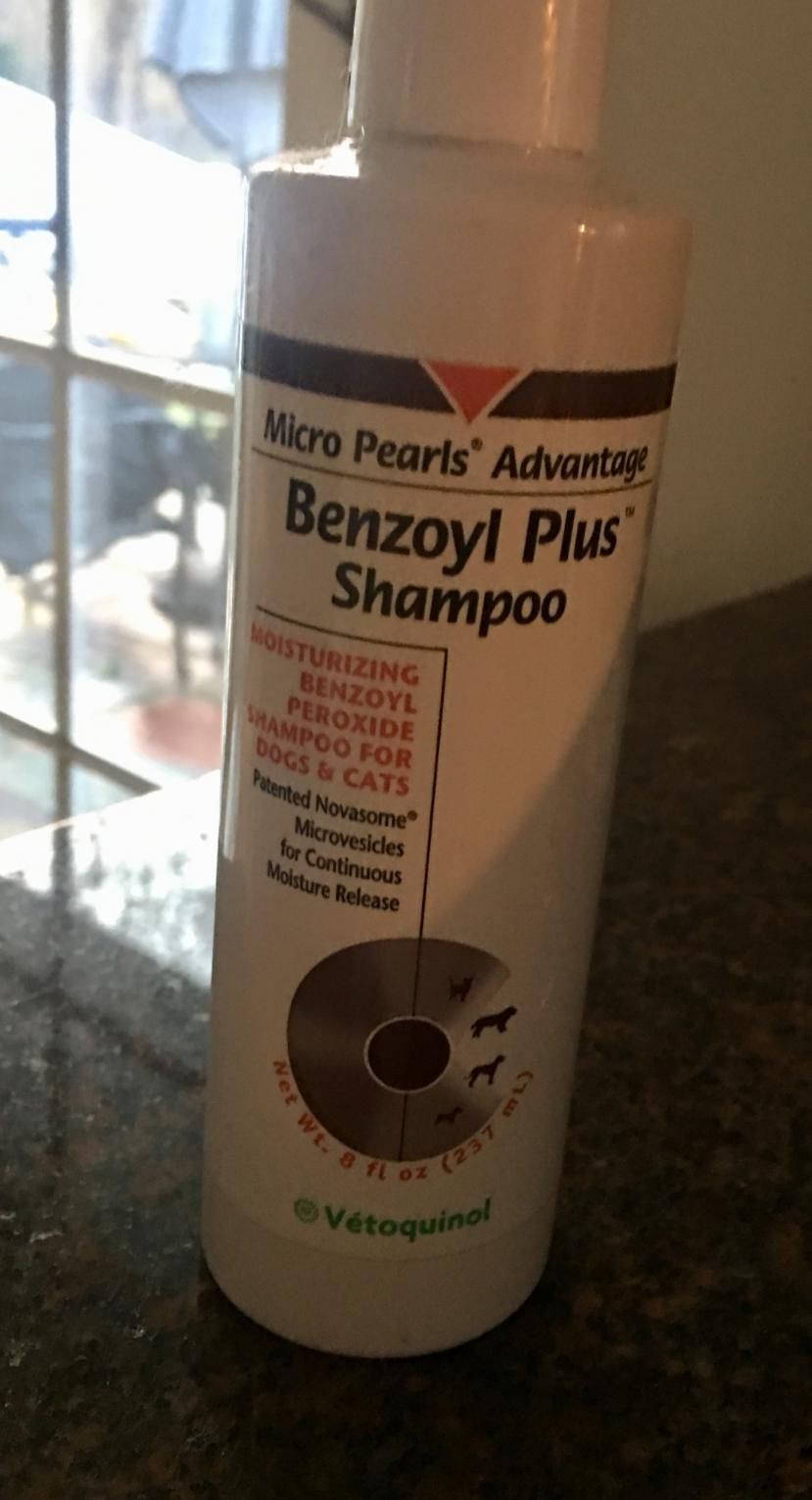 Out Of Dog Shampoo What Else Can I Use