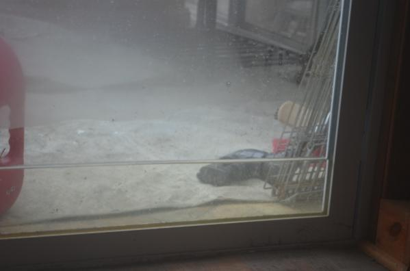Some recent pics of my home-family-room-water-sliding-doors-600x397-.jpg