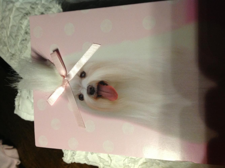 Favorite present/card-image.jpg