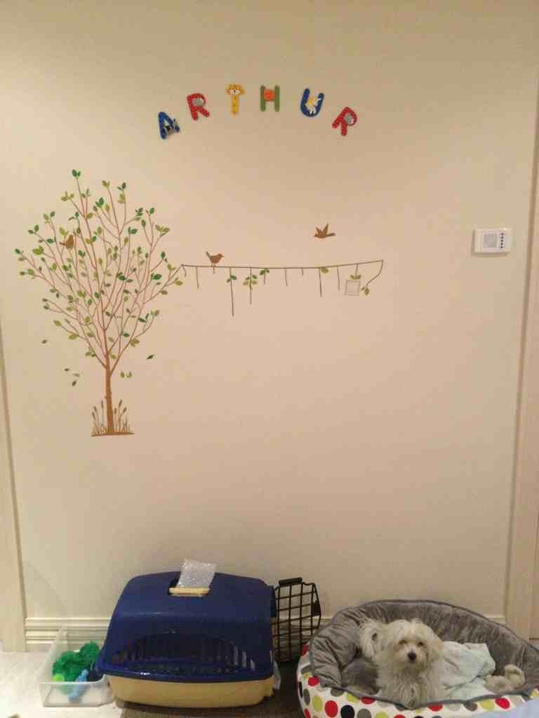 Arthur's Room Completed-imageuploadedbypg-free1353419494.192798.jpg