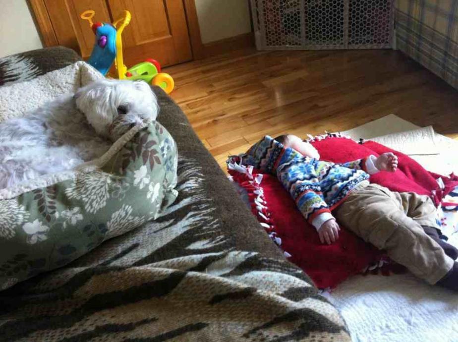 Sleepy Boys!-imageuploadedbypg-free1354252174.072915.jpg