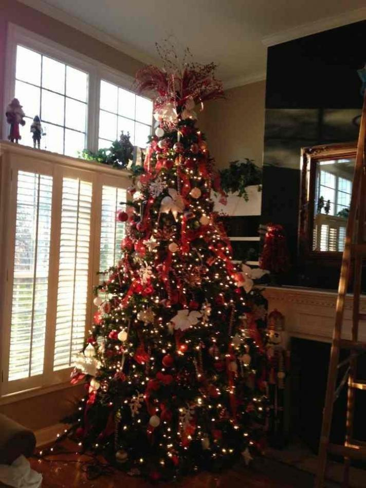 Hey!!!  So let's see your Christmas tree - or holiday decorations!!-imageuploadedbypg-free1354529397.153525.jpg