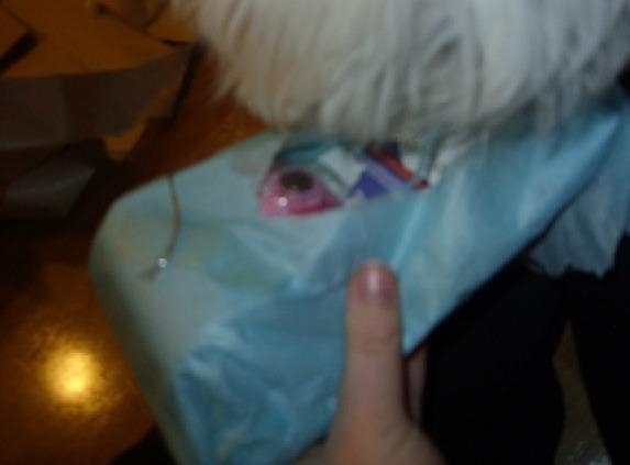 Sophie's SS Reveal..-imageuploadedbypg-free1355294380.817732.jpg