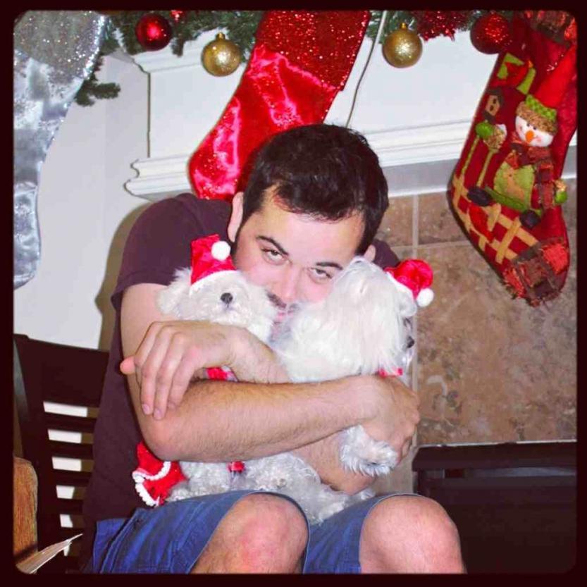 A very doggie Christmas-imageuploadedbypg-free1356502416.708451.jpg