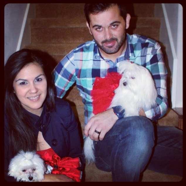 A very doggie Christmas-imageuploadedbypg-free1356502482.724715.jpg