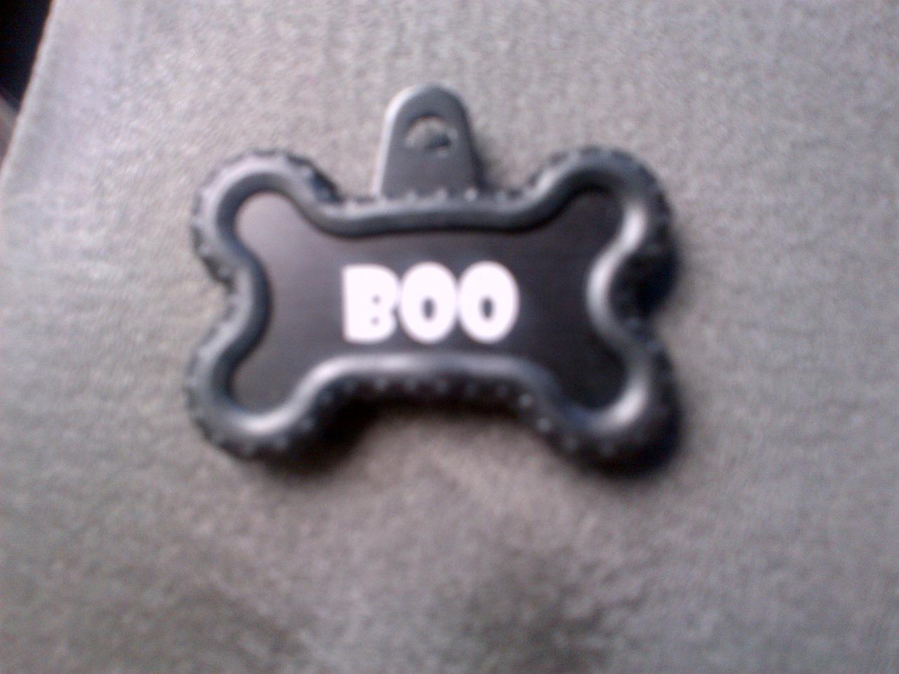 Boo Pics!-img-20120927-00678.jpg