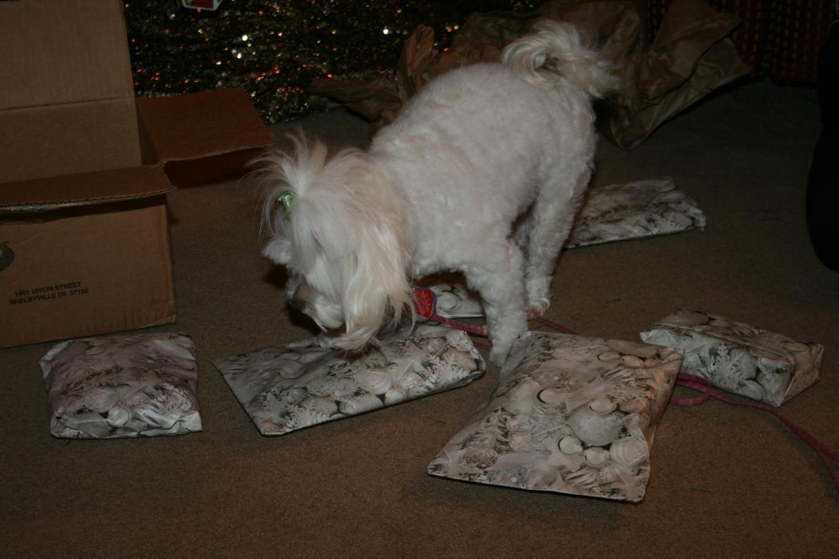 Thank You for the Presents!!-img_0005.jpg