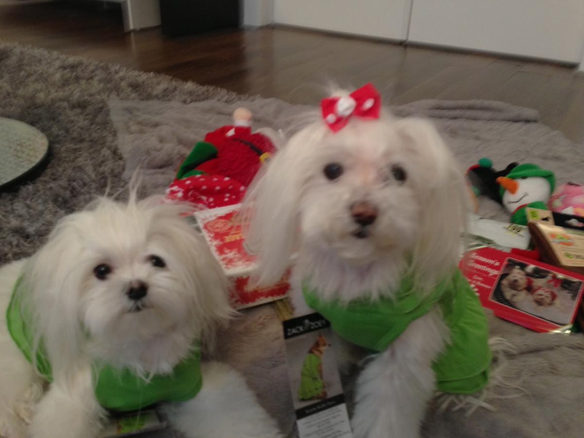 Sasha and Lola Pink's Reveal-img_0612.jpg