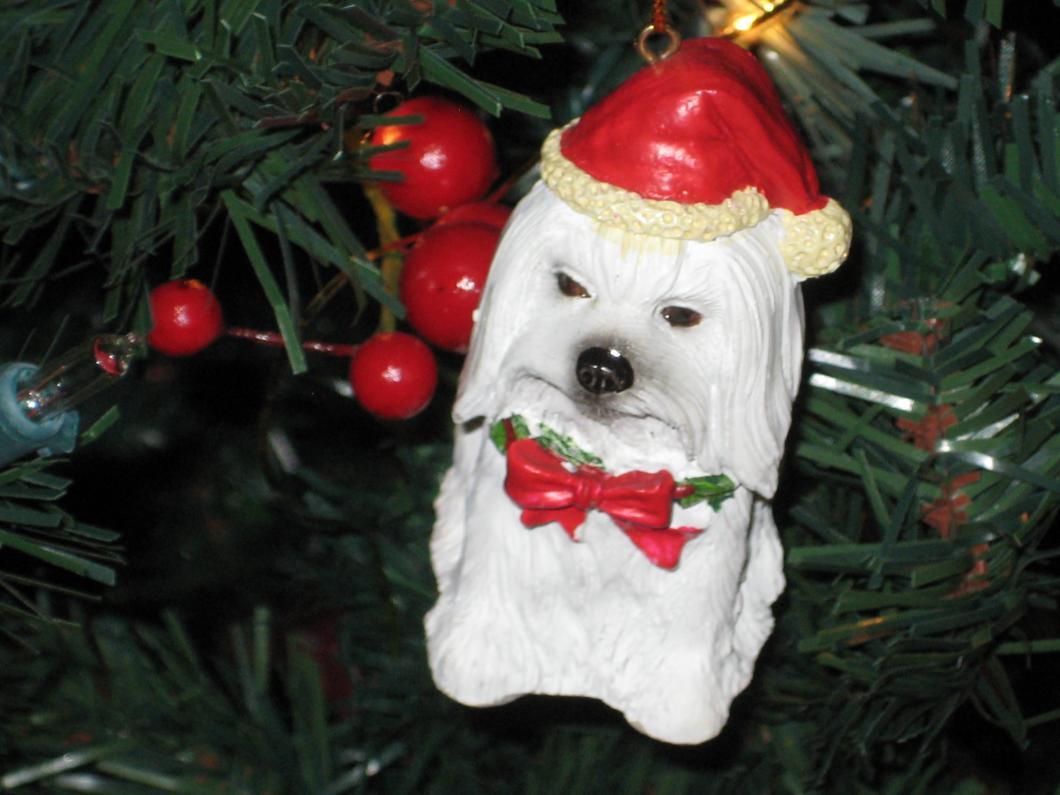 Giovanni's Secret Santa Reveal!-maltornament.jpg