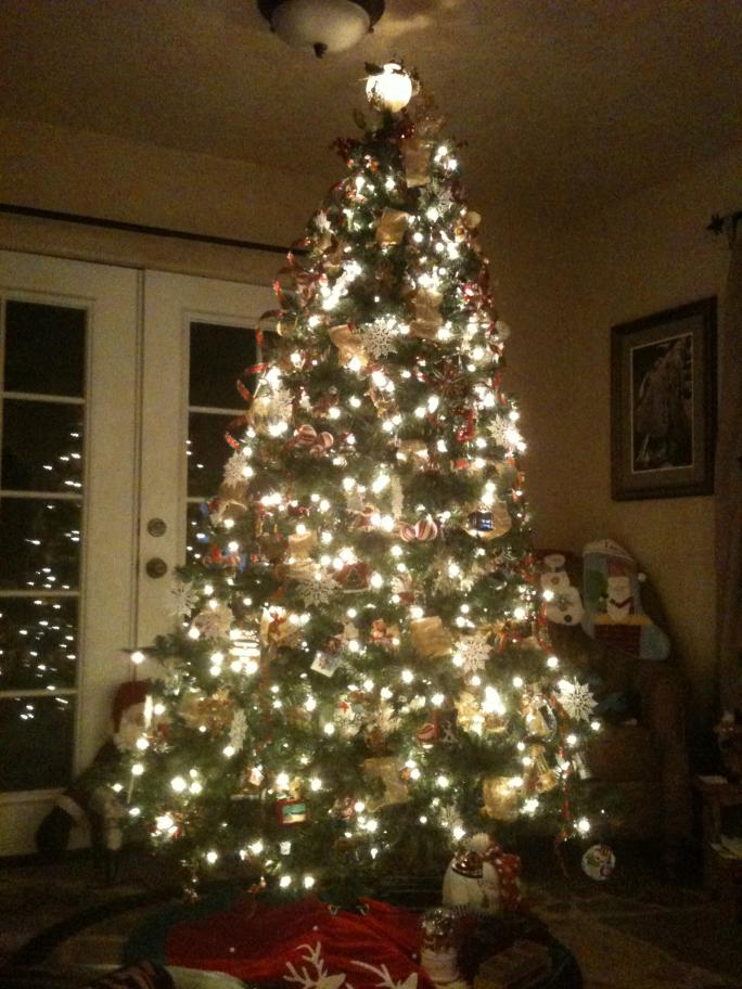 Hey!!!  So let's see your Christmas tree - or holiday decorations!!-photo-2-.jpg