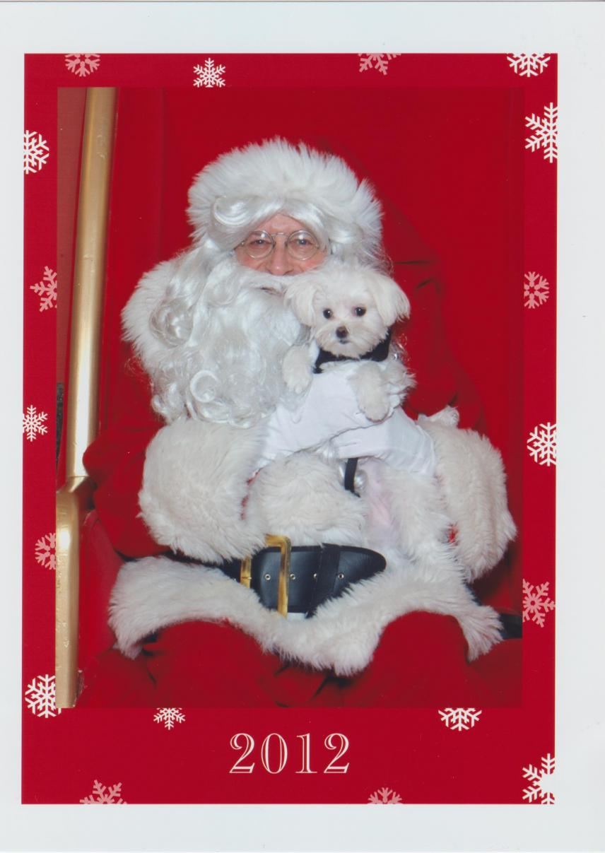 Bounce's first visit with Santa-santa-bounce-2012-001.jpg