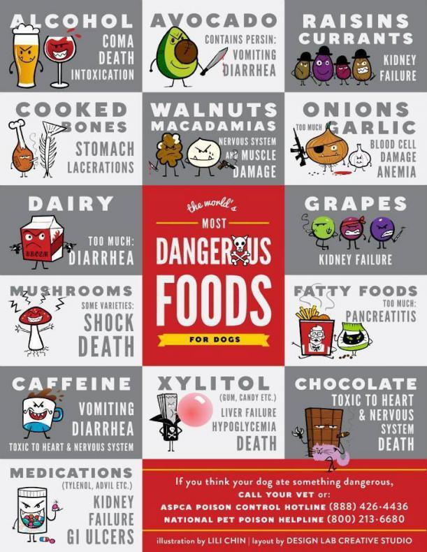 Dog Toxin Guide-toxins.jpg