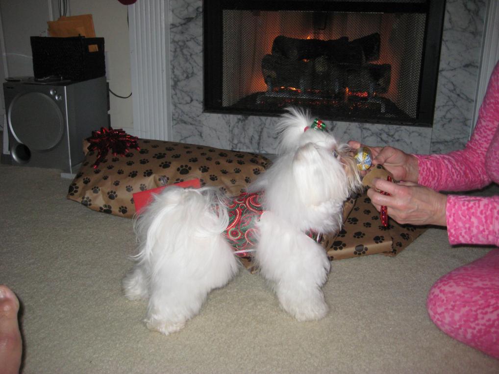 Giovanni's Secret Santa Reveal!-treatsausage.jpg